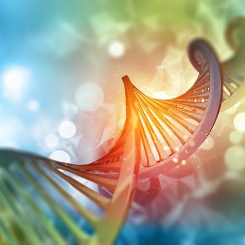 Formação médica em 3D com fita de DNA