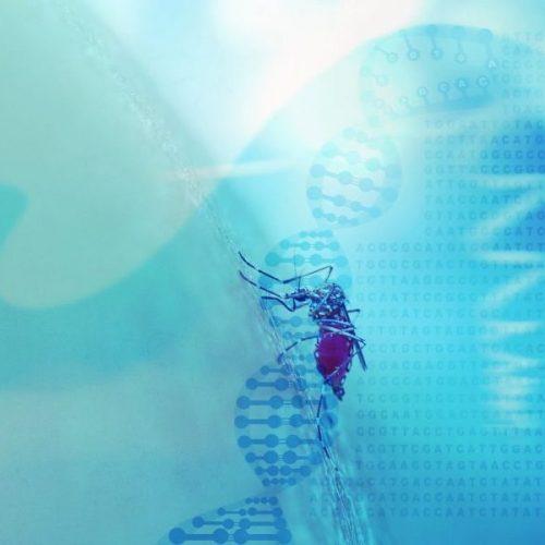 Abstrato base médico com hélice de DNA, código genético e mos