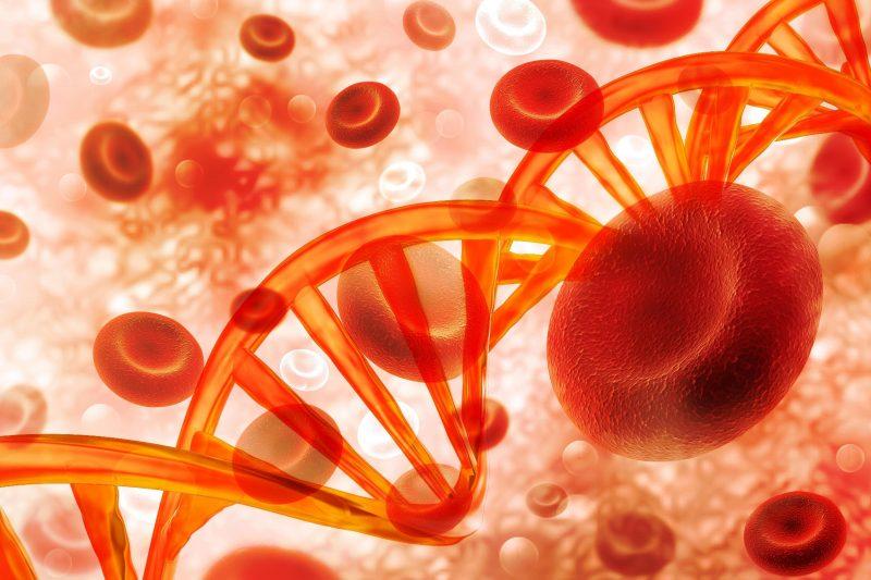 Célula de DNA de sangue na base científica