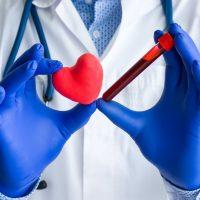 Diagnósticos médicos de laboratório, testes de coração e foto do conceito cardiovascular. Médico ou técnico de laboratório segura em uma mão um tubo de ensaio de laboratório com sangue, na outra mão - figura de coração