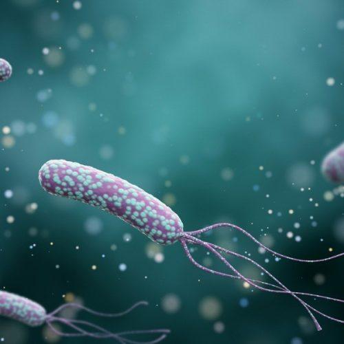 Ilustração da bactéria Helicobacter pylori em um fundo de cor abstrato. Conceito médico. 3 d render.